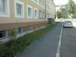 Велопарковка на Радищева 156